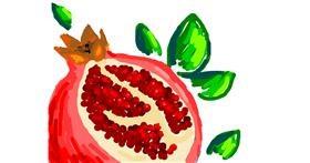Pomegranate drawing by Nan