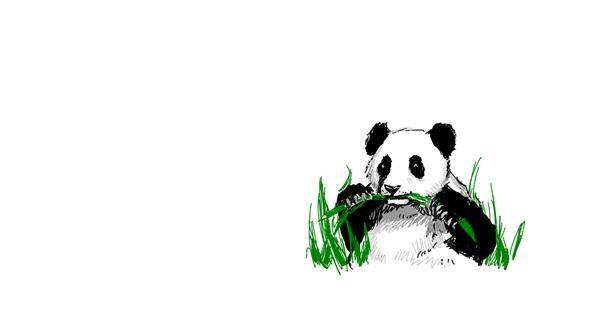 Panda drawing by Murdoc
