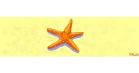 Starfish drawing by Drum