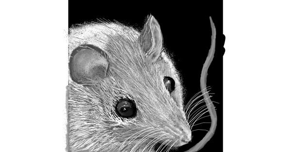 Mouse drawing by SIREN