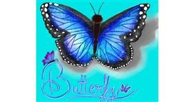 Butterfly drawing by Shalinee