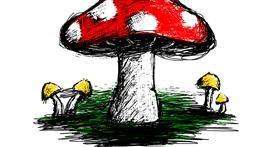 Drawing of Mushroom by Dana