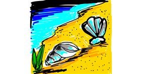 Seashell drawing by Sushi