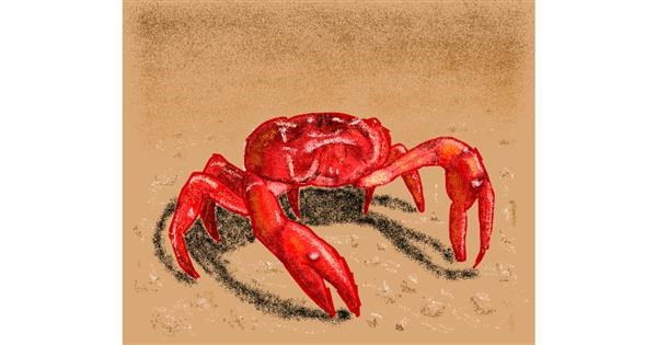 Crab drawing by Sam