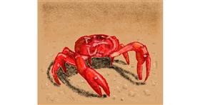 Drawing of Crab by Sam