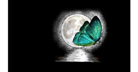 Butterfly drawing by teidolo