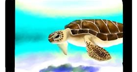 Sea turtle drawing by Zi