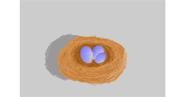 Nest drawing by Hi🤩