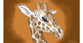 Giraffe drawing by Rush