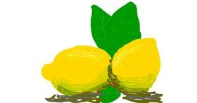 Lemon drawing by Firsttry