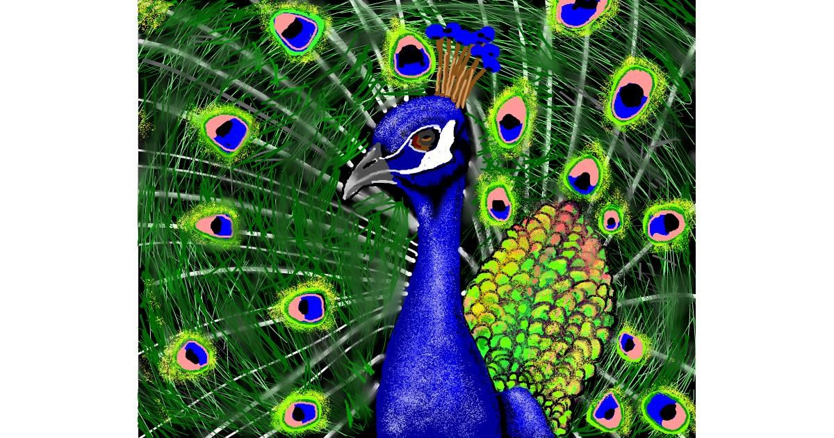 Peacock drawing by Cec