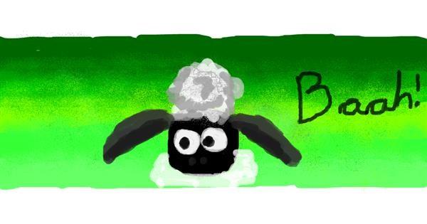 Sheep drawing by Pipa