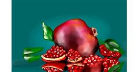 Pomegranate drawing by Rose rocket