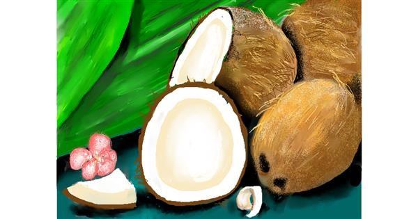 Coconut drawing by SAM 🙄AKA Margaret
