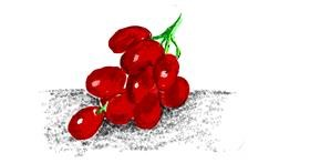 Grapes drawing by Lsk