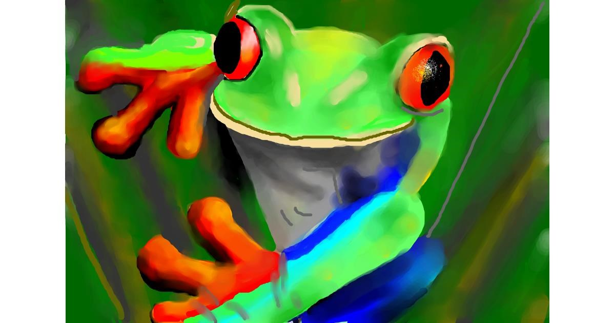 Drawing of Frog by Sirak Fish