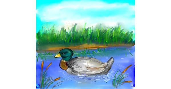 Duck drawing by Sn00pi