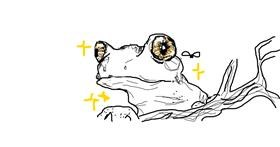Drawing of Frog by Dot