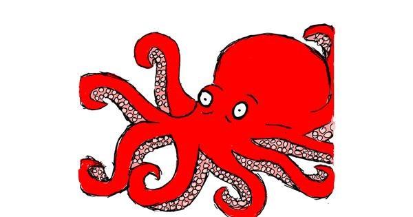 Octopus drawing by Feli