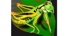 Grasshopper drawing by Yashi 🐢