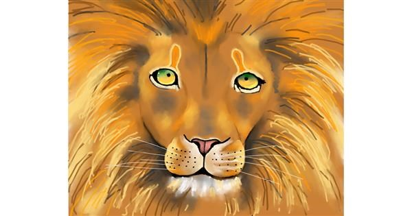 Lion drawing by Cec