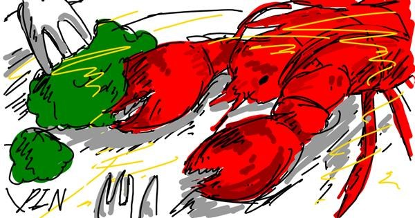 Lobster drawing by PIN