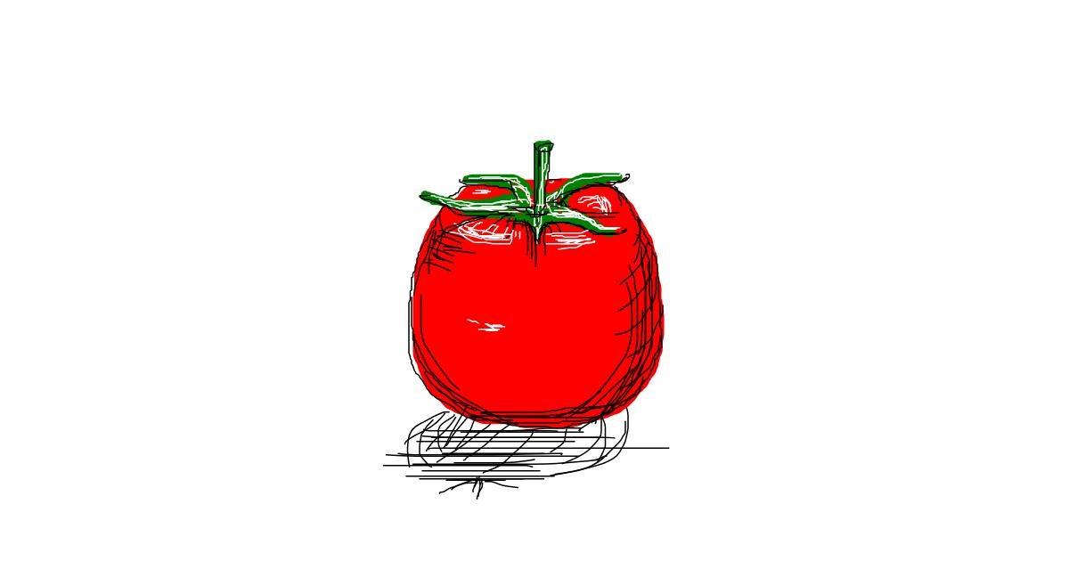 Tomato drawing by Hannah