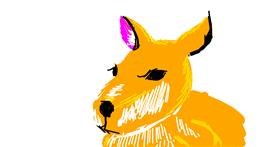 Kangaroo drawing by SFB