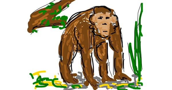 Monkey drawing by Firsttry
