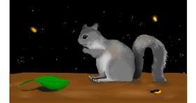 Drawing of Squirrel by leonardo de vinci