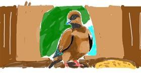 Bird drawing by JAmile