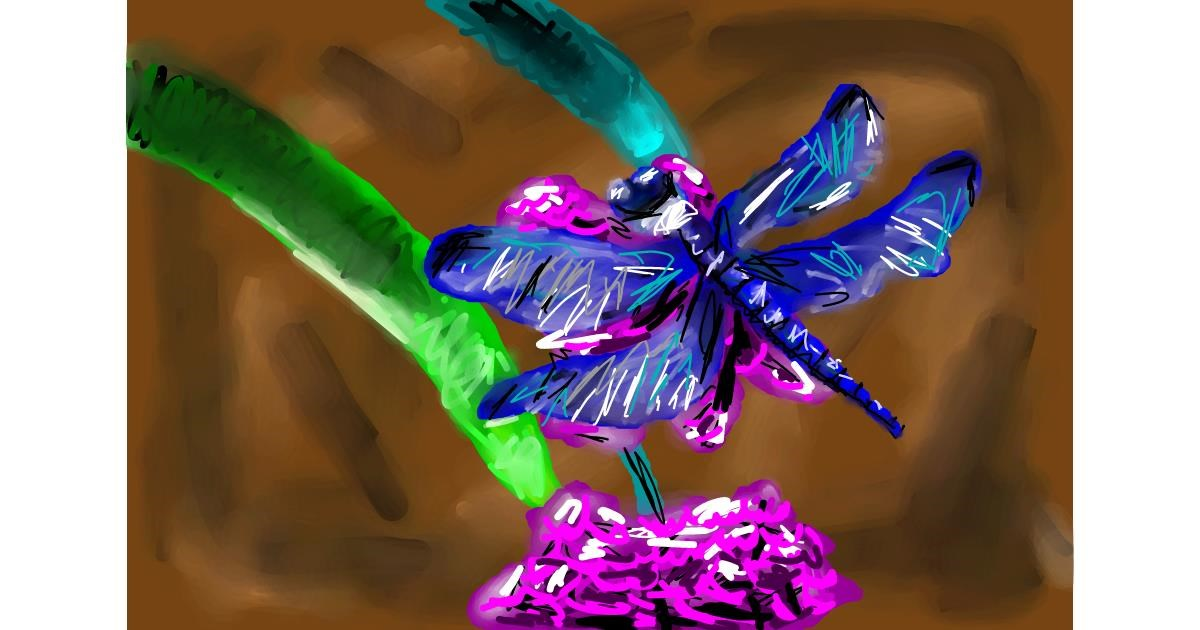 Drawing of Dragonfly by Soaring Sunshine