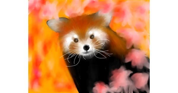 Red Panda drawing by Sophie_draw24