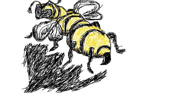 Bee drawing by Anonymous