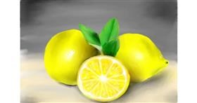 Drawing of Lemon by Wizard