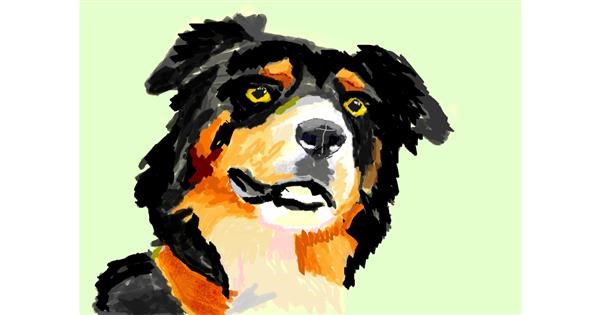 Dog drawing by 𝐓𝐎𝐏𝑅𝑂𝐴𝐶𝐻™