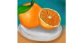 Drawing of Orange by Zeemal