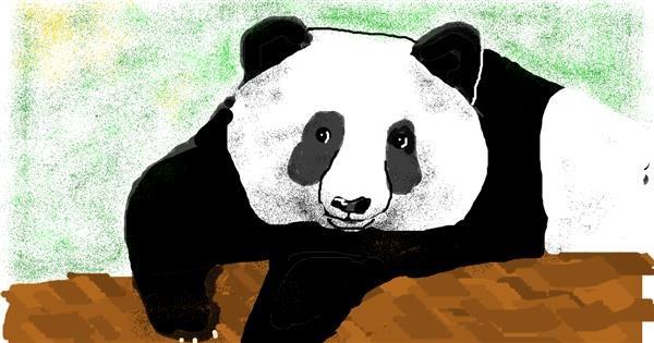 Panda drawing by Banana