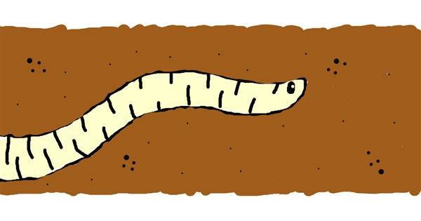 Worm drawing by bob