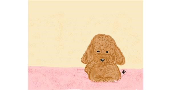 Poodle drawing by LAdy GAGa