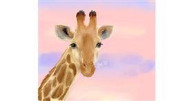 Giraffe drawing by Iris