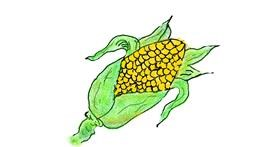 Corn drawing by tiny=)