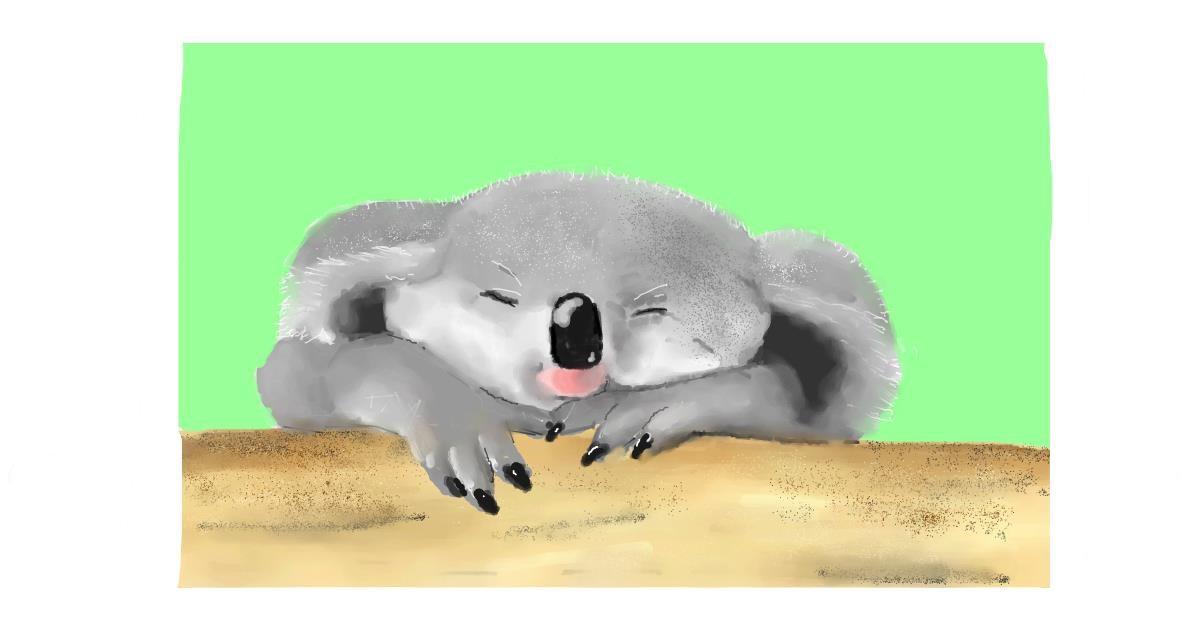 Drawing of Koala by Pinky