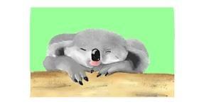 Koala drawing by Pinky