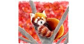 Red Panda drawing by DaVinky