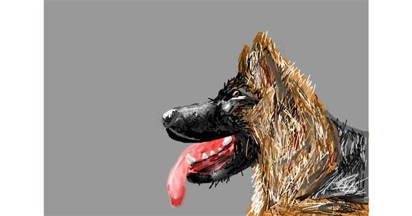 Dog drawing by Soaring Sunshine