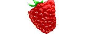 Raspberry drawing by Thomas