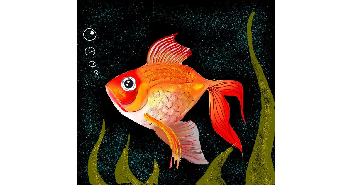 Drawing of Goldfish by Alex Berrhto
