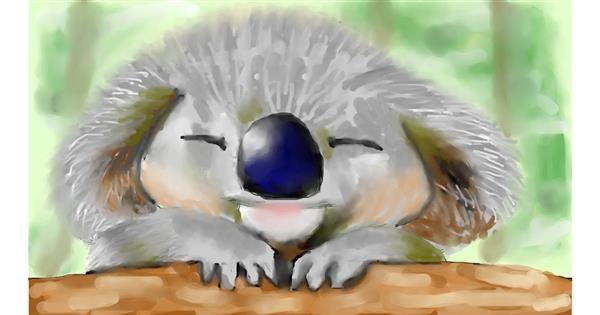 Koala drawing by Zi