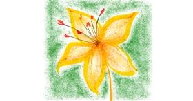 Lily flower drawing by Kelvin🦦